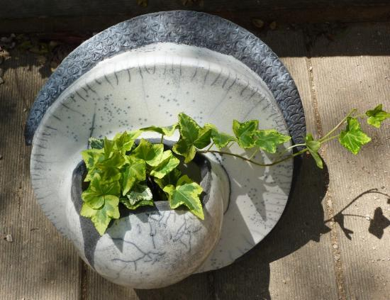 rondeur végétale